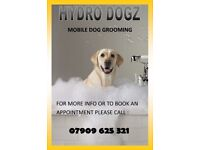 Mobile Dog Groomer (Hydro Dogz Dog Grooming) Glasgow,Clydebank & Surrounding Areas - We come to you