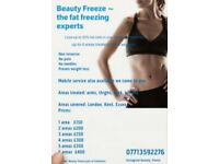 Fat Freezing Beauty Freeze Cryolipolysis Mobile Service