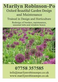 Oxford Beautiful Garden Design and maintenance