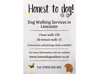 DOG WALKER - Lancaster, Morecambe and Heysham