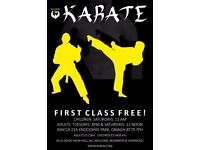 Adult Karate Class Omagh, First Class FREE