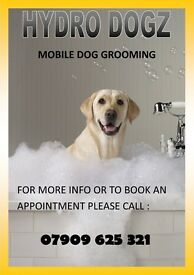Mobile Groomer (Dog Grooming) Clydebank,Knightswood & Surrounding Areas