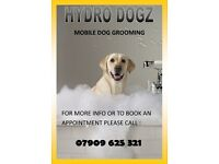 Hydro Dogz Mobile Groomer (Dog Grooming) Glasgow,Clydebank & Surrounding Areas Covered -