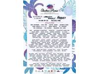 Electric Picnic 2×weekend camping passes and 2×early access tickets