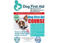 DOG FIRST AID COURSE - A FEW PLACES LEFT