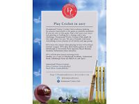 Play Cricket in 2017 at Inverleith Park