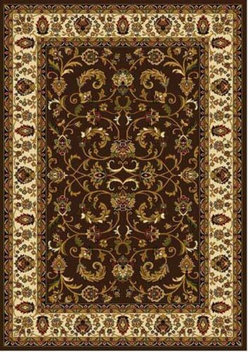 Brown Cream Ivory Bordered Traditional Area Rug Persian