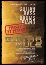 The Guitar Mule music tuition for guitar, bass, drums and piano