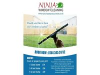 Ninja Window Cleaning Cambridge, Conservatory roof Cleaning,