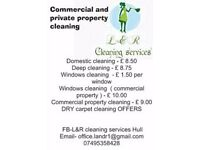 Domestic cleaning and Dry carpet cleaning