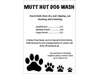 Dog Washing Service