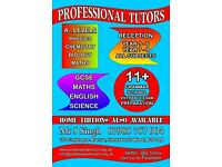 PROFESSIONAL TUTORS - A- LEVELS/GCSEs - PHYSICS/CHEMISTRY/BIOLOGY/MATHS/ENGLISH/11+ PREPRATION