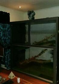Reptile custom viv for sale