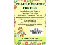 Domestic Cleaning Services £12.50 an hour