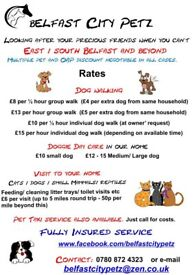 Dog Walking Day Care Pet Visits Belfastcitypetz Looking After Loved Ones While You