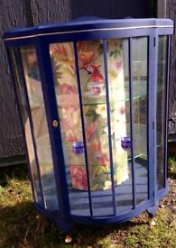 Bespoke beautiful Upcycled Retro/Vintage glass display cabinet