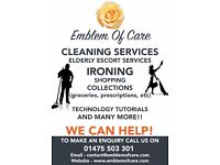 cleaning, ironing, escort services, collections