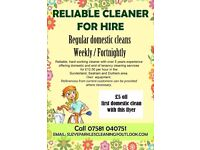 Reliable Cleaner for Hire, Regular domestic cleans, Weekly, Fortnightly