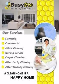 Professional and affordable cleaning/ironing service available. No contract fees.