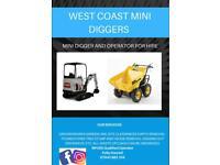 Mini And Micro Digger Hire