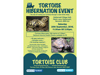 Tortoise Hibernation Event