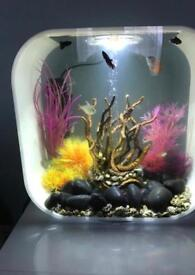 BiOrb fish tank aquarium