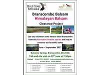 BRANSCOMBE BALSAM CLEARANCE PROJECT