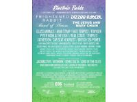 Electric Fields weekend camping ticket