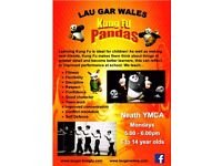Kung Fu Pandas are back at the YMCA!