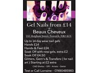 CND Shelac, Gelish, OPI Gel Nails - up to 14 day wear nail gel - £14