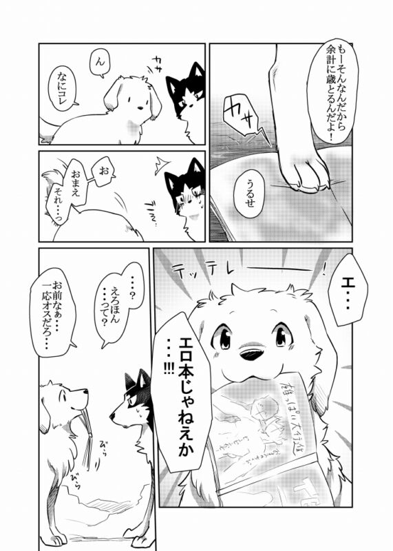 Doujinshi KEMONO Dog D-Point Yume Ravage tsukune naga furry kaiten B5 38pages
