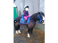 Childrens pony SOLD PENDING COLLECTION