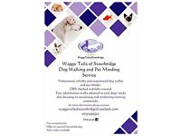 Waggy Tails of Stourbridge Dog Walking and Pet Minding