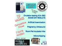 K9 Fertility Services | Puppy Incubator Hire