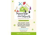 Domestic Cleaner, Space Beautifyer and beyond