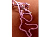 Pony size headcollar and rope in pink. Brand new . Kinmuck area