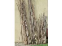 Hazel Bean poles/sticks/stakes Good for bean poles Assorted lengths and diameters.