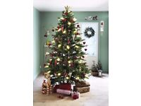 Norwegian Real Christmas Trees - Pack of Cards, Brighton