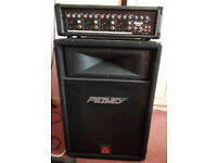 Prosound N73HH 100w - 4 channel amp (Plus) Peavey 300w speaker cab too.