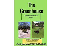 The green house Garden services and garden maintenance-garden tidy up