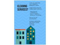 DOMESTIC CLEANING and IRONING, CARDIFF. Unbeatable prices, Unbeatable services