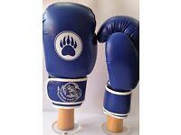 Bear Pro Training Gloves 14oz Excellent Beginners Gloves