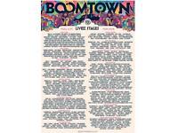 1x Standard entry boomtown ticket