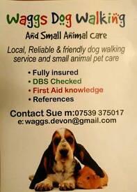 Waggs Dog Walking, Pet Sitting & Pet Care