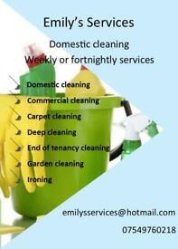 Emily's Services Cleaning company