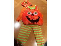 Child's 3-4 years pumpkin costume