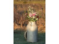 Vintage milk churns - Perfect for weddings, occasions, events, parties. Rustic and original