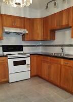 Newly renovated 5 bedroom 3 bathroom! Bright and spacious