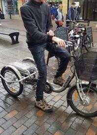Electric three wheeler bike