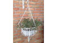 HANGING BASKETS WITH PLANTS